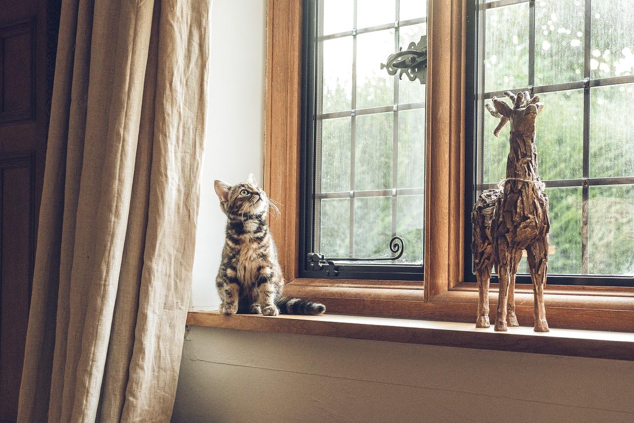 Quelles matières choisir pour vos fenêtres ?